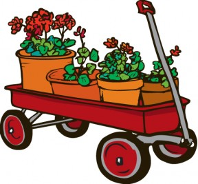 Red Wagon and Geraniums